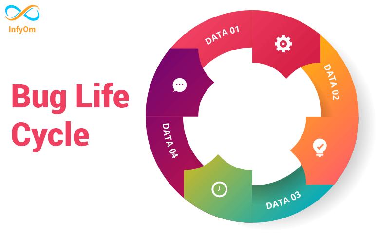 Bug Life Cycle